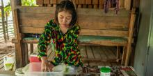 La Libre Le Bassin du Mékong : bombe à retardement dans la guerre contre le paludisme ?